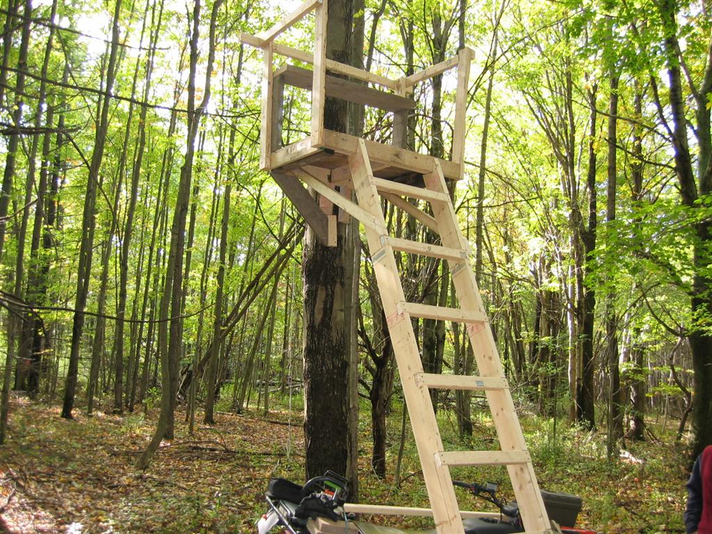 Build wood ladder stand ohio woodworking expo for Climbing tree stand plans
